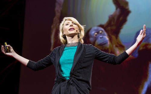 Amy Cuddy demonstrates a classic power pose, used my humans and chimps alike—spreading your arms wide to appear more powerful. Photo: James Duncan Davidson